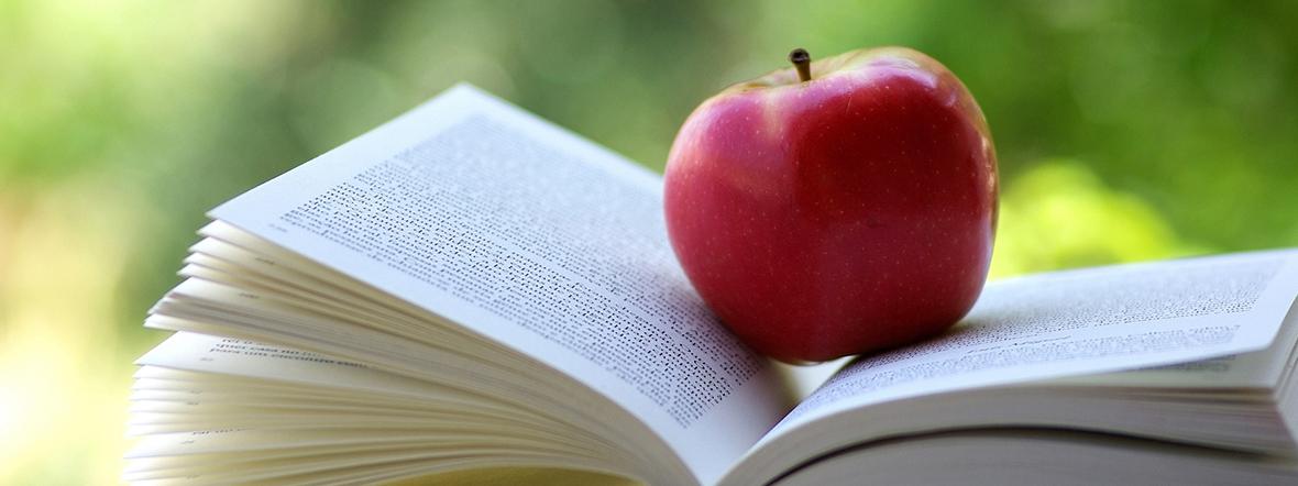 Kopfbild Kantonale Kommission für Schul- und Gemeindebibliotheken